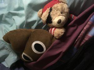 donga teddys Poo and Pirate